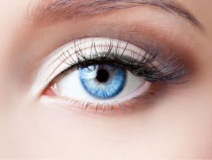 The Power of the Eyes in Water Restoration using Online Training with Reets Drying Academy