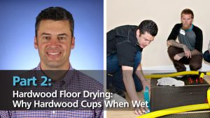 Video-Why hardwood cups when wet